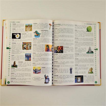 mon-premier-dictionnaire-illustre-3